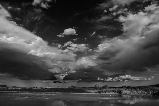 Rainstorm over Bosque del Apache